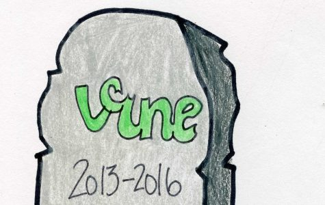 Vine has looped its way six feet into the ground