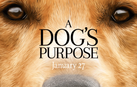Being a puppet is not a dog's purpose
