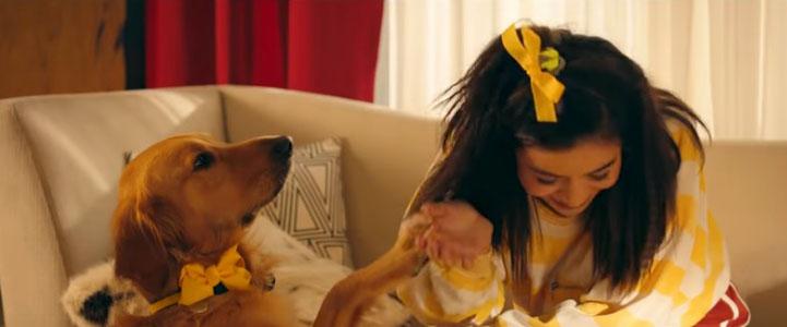 'Happier' music video makes audience sadder