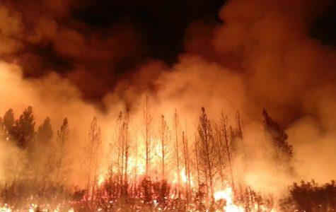 California wildfire causes mass destruction