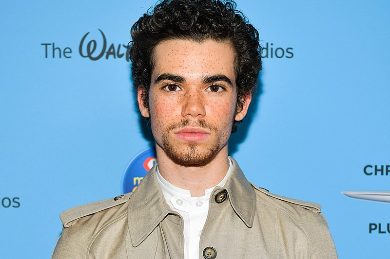 (Photo obtained from Wikimedia.org) Disney star Cameron Boyce gone too soon along with many other celebrities.