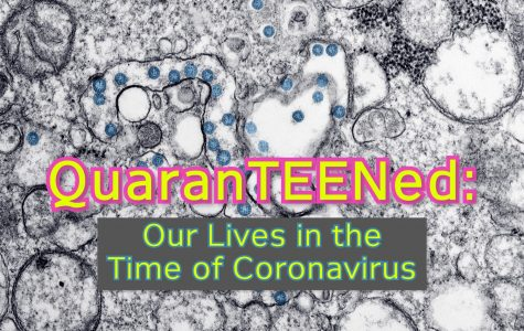 In response to the unprecedented closure of West Essex and all New Jersey schools in the face of the coronavirus pandemic, 24 of the Wire's staffers chose to vlog about their experience one week into self-imposed quarantine.