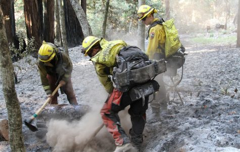 Members of the California Army National Guard put out a fire Sept. 1, near Scott's Valley, California. Weeks of wildfires have burned more than 3.6 million acres of land in California alone since the beginning of the year, according to the California Daily Wildfire Report by CalFire.
