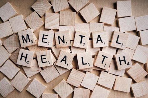 A lot of students struggle with mental health issues and have a hard time dealing with their mind and schoolwork.